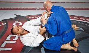 Fight To Win Brazilian Jiu Jitsu: One or Three Months of Brazilian Jiu-Jitsu Classes at Fight To Win Brazilian Jiu Jitsu (Up to 78% Off)