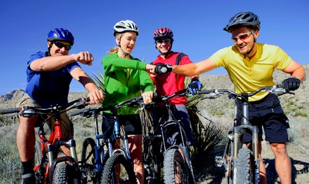 Four-Hour Bike Rental for One, Two, or Four from Arizona Hike Bike and Board (Up to 53% Off)