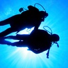 44% Off Dive Class and Certification