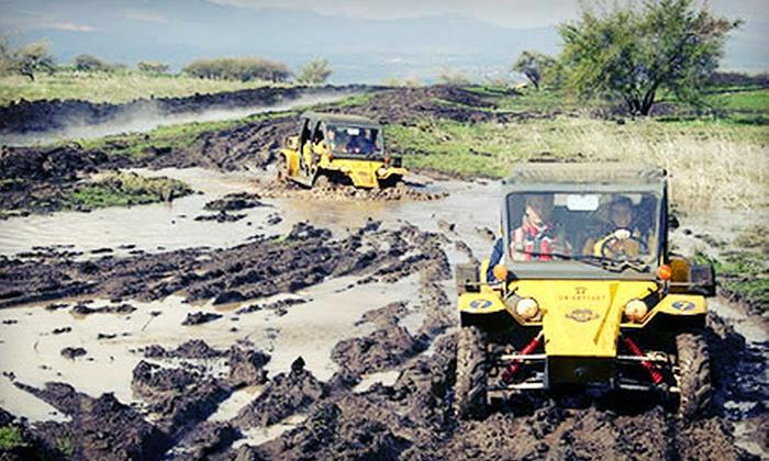 Safari Tomcar - Pine Del: Half-Day Two- or Four-Seat Tomcar Rental from Safari Tomcar (Half Off)