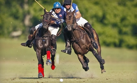 One General-Admission Ticket (a $20 value) - Houston Polo Club in Houston