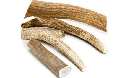 Naturally Harvested Elk Antler Tips (5-Pack)