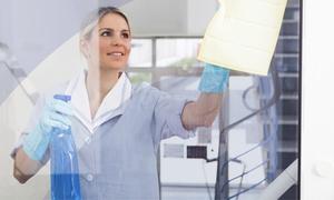 Bro Group Gebäudereinigung: Professionelle Fensterreinigung inkl. Anfahrt und Material von Bro Group Gebäudereinigung (bis zu 57% sparen*)