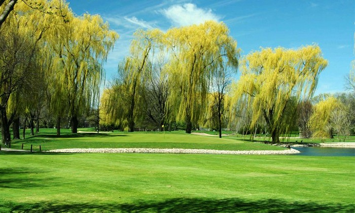 Old Orchard Country Club - Mount Prospect: 18-Hole Round of Golf and Cart Rental for Two or Four at Old Orchard Country Club (50% Off)