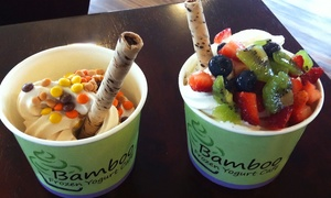 Bamboo Frozen Yogurt: $12 for Four Groupons, Each Good for $5 Worth of Frozen Yogurt at Bamboo Frozen Yogurt ($20 Total Value)