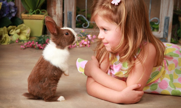 Leasures Designer Portraits - Chandler: Children's Fairy or Live-Bunny Portrait Shoot with One or Three Prints at Leasures Designer Portraits (Up to 70% Off)