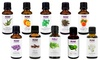 NOW Essential Oils 10-Oil Variety Pack