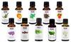 NOW Essential Oils (10-Pack): NOW Essential Oils (10-Pack)