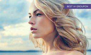 Echo Salon: Haircut and Style with Optional Partial or Full Highlights with a Senior Stylist at Echo Salon (Up to  66% Off)