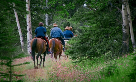 One-Hour Guided Group Horseback Trail Ride for Two or Four at JuRo Stables (Up to 51% Off). Four Options Available.
