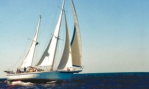 Starsand Yacht Charters: Rottnest Island Cruise & Lunch for One ($119) or Four ($469) (+$18pp Fee), Starsand Yacht Charters (Up to $940 Value)