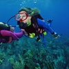 Up to 59% Off Scuba Course from Poseidon's Divers
