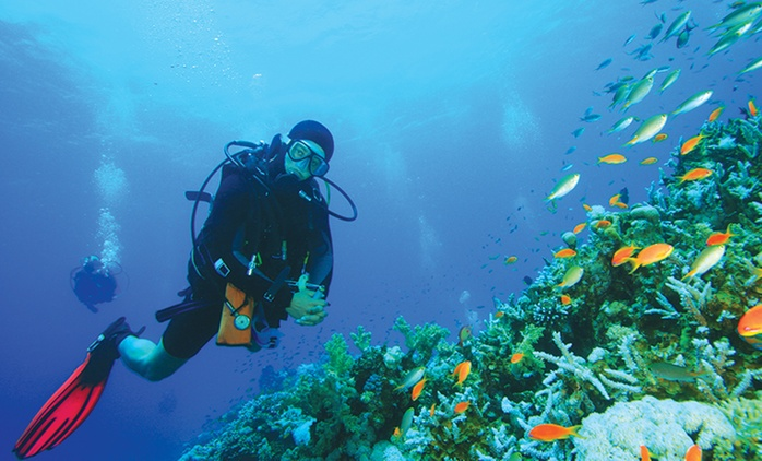 Open Water SDI Dive Course for One ($199), Two ($389) or Four People ($749) at St George Underwater (Up to $3,356 Value)