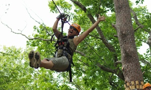 ZIPStream Fall Creek Falls: Aerial Adventure Park Experience and T-shirt for One, Two, or Four at ZIPStream Fall Creek Falls (Up to 49% Off)
