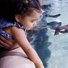 Up to 54% Off Admission and Activities at San Antonio Aquarium