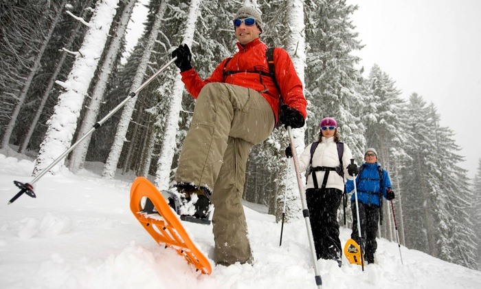 Blackcomb Snowmobile - Whistler: Trapper's Trail Snowshoe Tour for Two or Four from Blackcomb Adventures(50% Off)