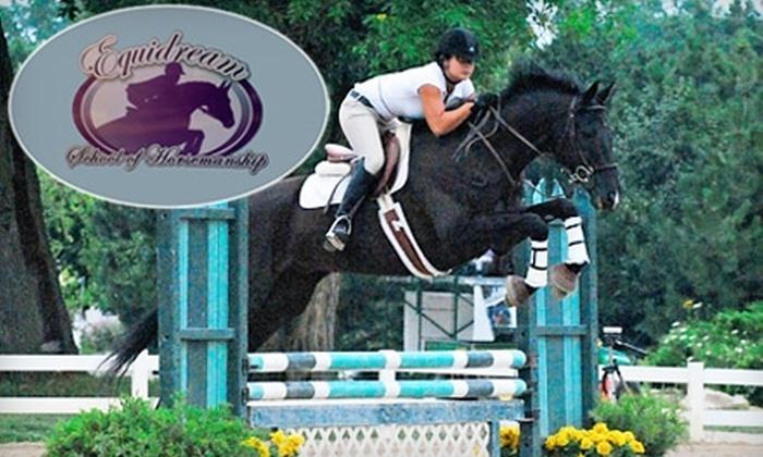 Equidream School of Horsemanship - Wauconda: $20 for a Private Half Hour Lesson at Equidream School of Horsemanship in Grayslake ($45 Value)