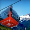 Up to 54% Off Mount Rainier Tour for Two