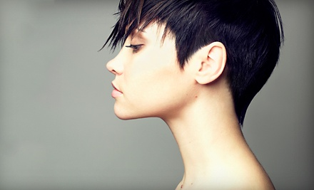 Haircut and Conditioning Package  - Atmosphere Essentials in Staten Island