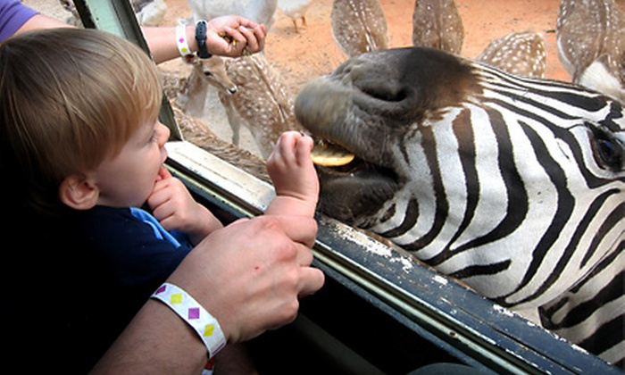 Hollywild Animal Park - Wellford: Zoo Day Passes for Two or Family of Four at Hollywild Animal Park