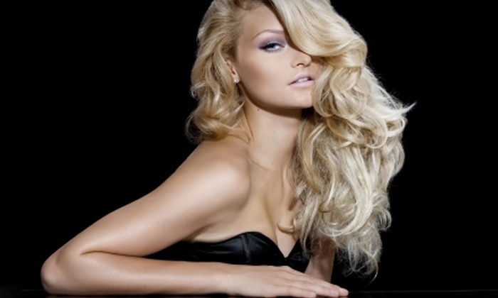 Salon Sartor - Brooklyn Park - Maple Grove: $25 for $50 Worth of Salon Services at Salon Sartor in Maple Grove