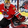 58% Off Rockford IceHogs Package