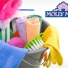 57% Off Cleaning from Molly Maid