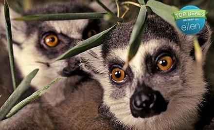 Micke Grove Zoological Society - Micke Grove Zoological Society in Lodi