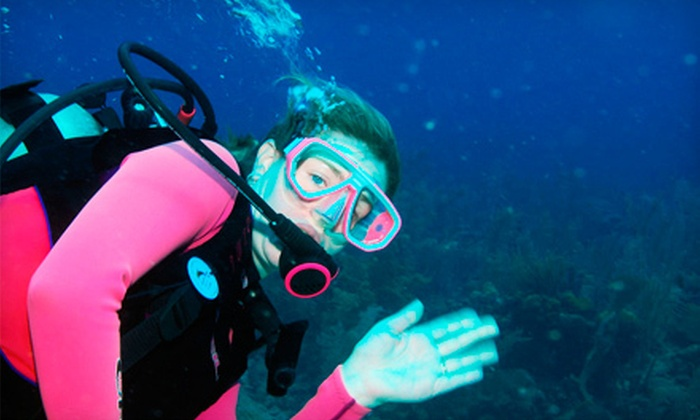 Ski Scuba Center - 1: Three-Hour Try Scuba Class or Open-Water Diver Class with Certification at Ski Scuba Center (Up to 52% Off)