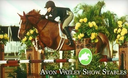 Avon Valley Show Stables - Avon Valley Show Stables in Avon