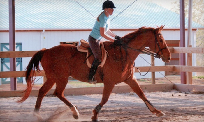 Mountain Meadow Equestrian Center - Maryville: Private or Group Riding Lessons or Horse Boarding at Mountain Meadow Equestrian Center in Maryville. Four Options Available.