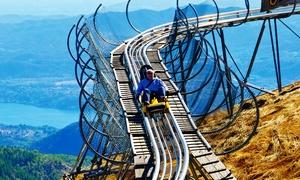 ALPYLAND: 2, 4 o 6 discese con Apine Coaster - Brivido e panorami mozzafiato sui laghi al parco Alpyland, zona Mottarone