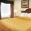 Up to 71% Off at Comfort Inn & Suites Dimondale