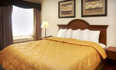 Standard-Room Park-and-Fly Package - Comfort Inn & Suites Dimondale in Dimondale