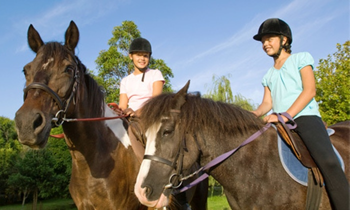 Heritage Stables, LLC - Randolph: $42 for a 60-Minute Private Horseback-Riding Lesson at Heritage Stables, LLC ($85 Value)