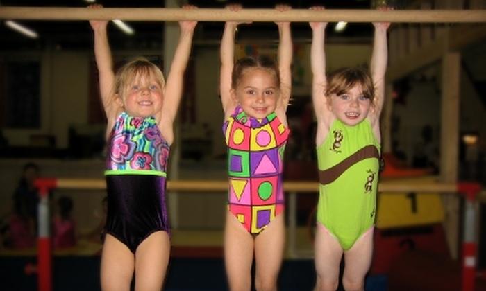 Mills Gymnastics - Southgate: Full-Day Kids' Gymnastics Camp or Four Kids' Classes at Mills Gymnastics in Southgate
