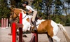 Great Griffin Farms - Lake Saint Louis: $49 for Two Private Horseback-Riding Lessons at Great Griffin Farms in Wentzville ($100 Value)