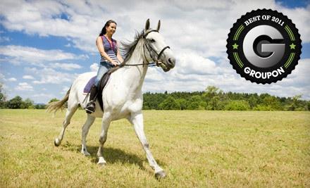 Horse Rides of Pensacola - Horse Rides of Pensacola in Pensacola