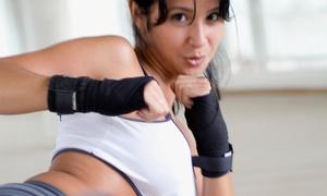 Brazilian Top Team: 10 or 20 Cardio-Kickboxing, Muay Thai, or Brazilian Jiu-jitsu Classes at Brazilian Top Team (Up to 88% Off)