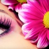 Up to 51% Off Eyebrow Threading