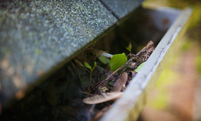 A & M Home Services - South Bend: Gutter Cleaning for 100, 200, or 300 Feet from A & M Home Services (Up to 61% Off)