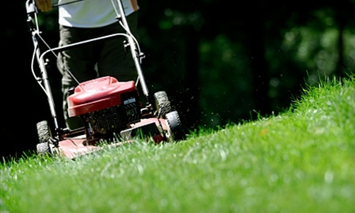 West Texas Lawn Pros - San Angelo: $40 for $80 Worth of Lawncare and Yard Cleaning on a Half Acre of Land from West Texas Lawn Pros