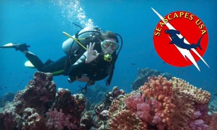 Seascapes USA - Syosset: $30 for a Discover Scuba Lesson from Seascapes USA in Syosset