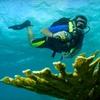 68% Off Scuba Class at Open Water Adventures