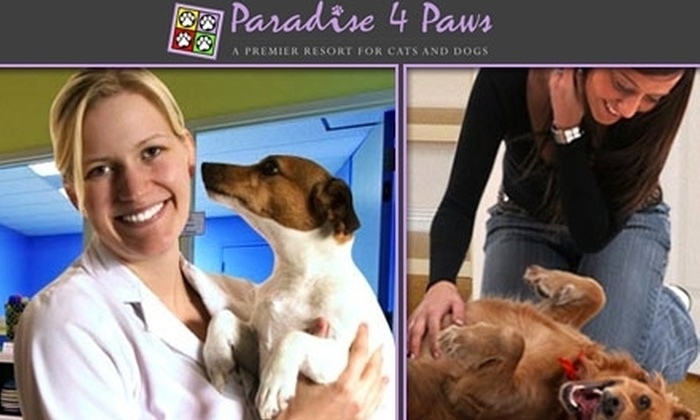 Paradise Paws - Schiller Park: $24 for a Deluxe Doggie Overnight Package & Airport Parking from Paradise 4 Paws ($61 Value)