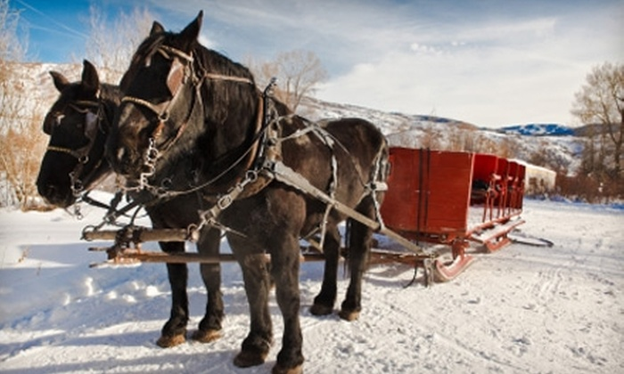Mount Charleston Trail Rides - Clark: $15 for 30-Minute Sleigh Ride with Mount Charleston Trail Rides ($30 Value)