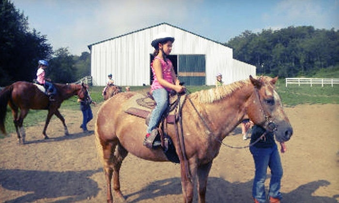 Blue Ribbon Farms - Independence: One or Three 60-Minute Private Horseback-Riding Lessons at Blue Ribbon Farms in Aliquippa (Up to 54% Off)
