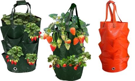 1 o 2 bolsas de plantación para frutas, flores y verduras