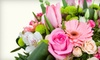 The Hen 'n The Ivy - Bay Village: Flower Bouquets and Potted Plants from The Hen 'n The Ivy in Avon (Up to 53% Off)