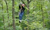 Up to 56% Off from Lake Geneva Canopy Tours